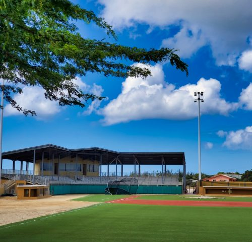 Baseball Stadium-1